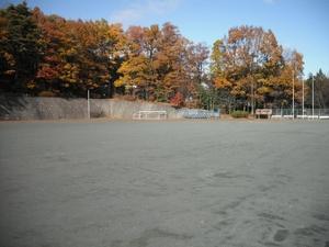 спортивная площадка(運動場)