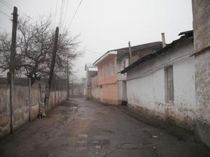 ホームステイ先のお宅(家の前の道路)