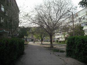 アパートの前