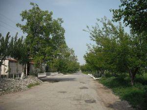 家の近所の風景