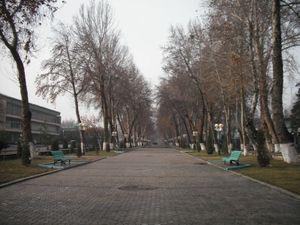 フェルガナの並木道9