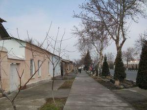 ウズベキスタン(フェルガナ)