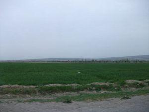 フェルガナ州クヴァの風景