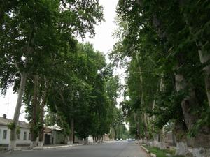 緑の街フェルガナ