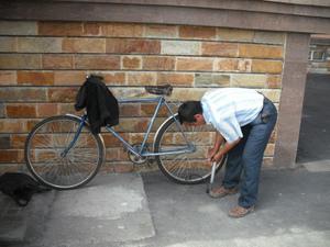 大学の自転車置き場