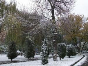タシュケントの雪景色