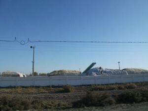収穫した綿の集積場