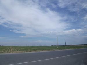 夏のウズベキスタン