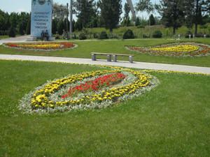 ウズベキスタン(首都タシケントの公園)