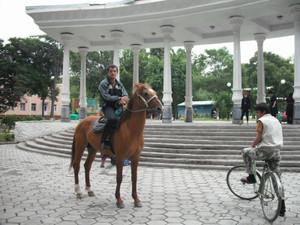フェルガナの乗馬