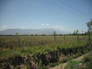 フェルガナ盆地(ウズベキスタン・キルギス・タジキスタン)の国境付近