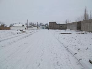 冬のウズベキスタン