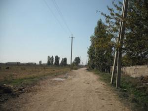 ウズベキスタンの農村風景
